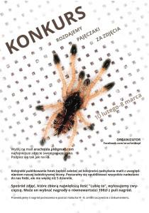 Plakat konkursowy Arachnida.pl